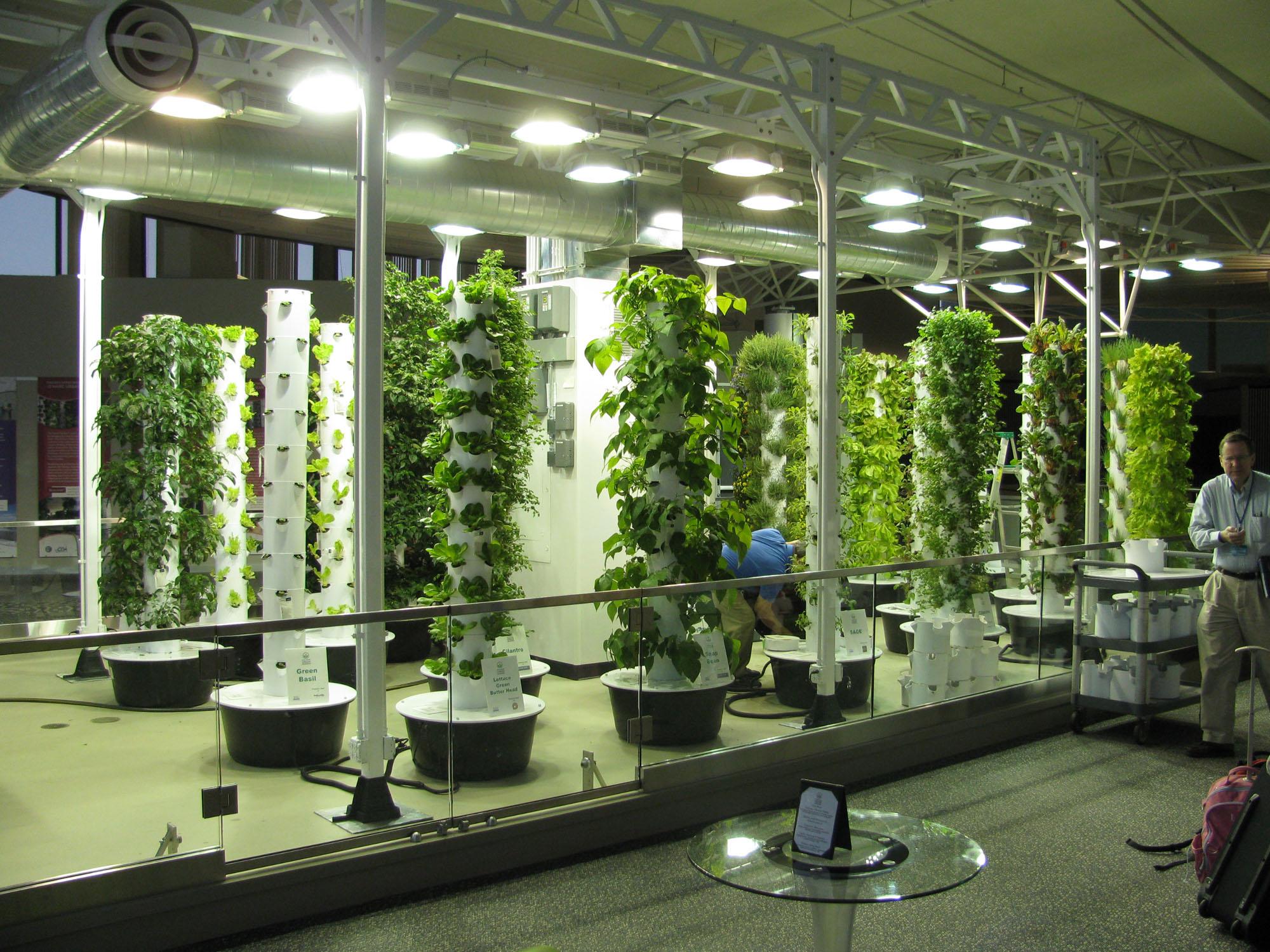 Incredible Vertical Garden Design