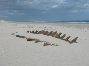 Some of the Arniston's remains