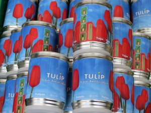 Tupil bulbs sold in cans/tins