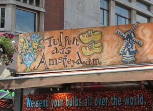 Tulips from Amsterdam advertised