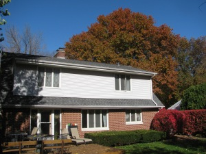 Back of our house with fall colors