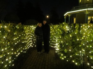 In the Labyrinth of Lights