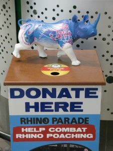 "A Donation box, with a miniature ""rhino on parade"""