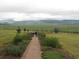 Walking down the long path---see the cluster of black poles on the far right