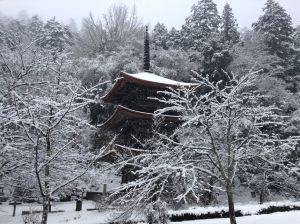 The temple and its garden with cherry trees still looks gorgeous in the winter snow