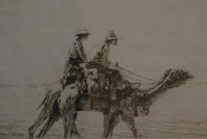 camels2