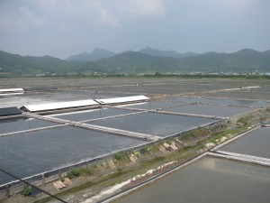 Salt pans in Korea