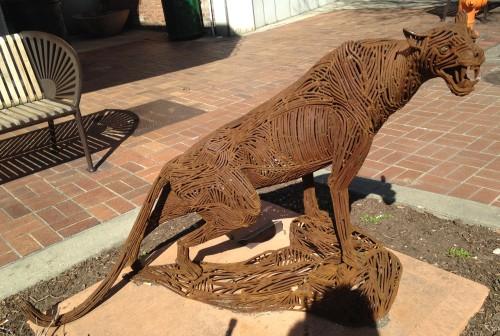 coppercat