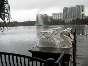 swanboats