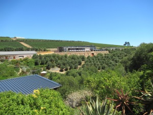 wineryfarview